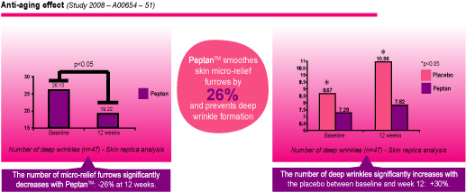Peptan in anti aging and wrinkle effects